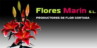 Flores Marin