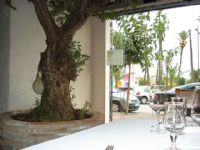 Restaurante La Masia - 5
