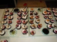 Cocina Internacional - 3