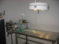 Veterinarios Alhama - 11