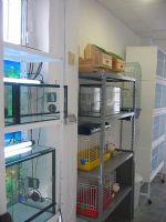 Veterinarios Alhama - 12